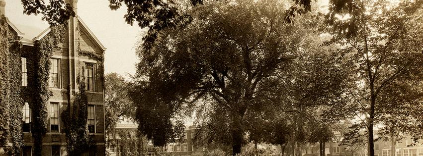 Archives – Chancellor's Elm
